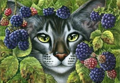 кошки-ягодки