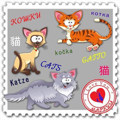 Коты Мира