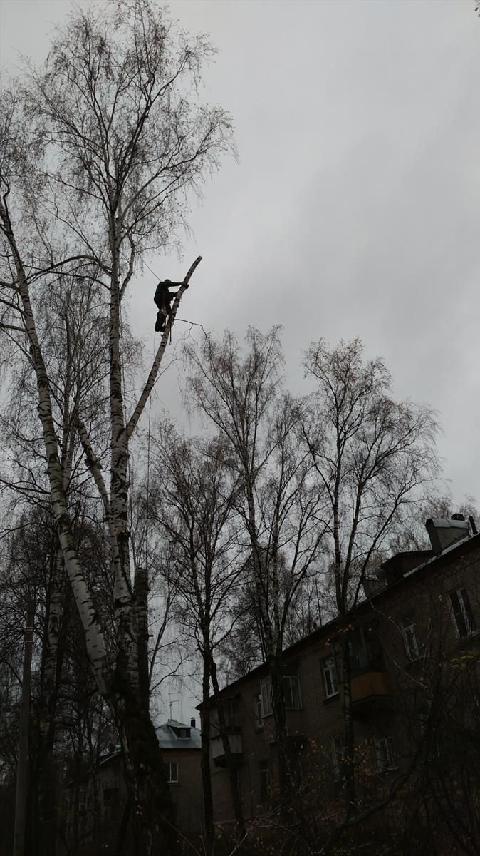 Удаление деревьев станция Удельная