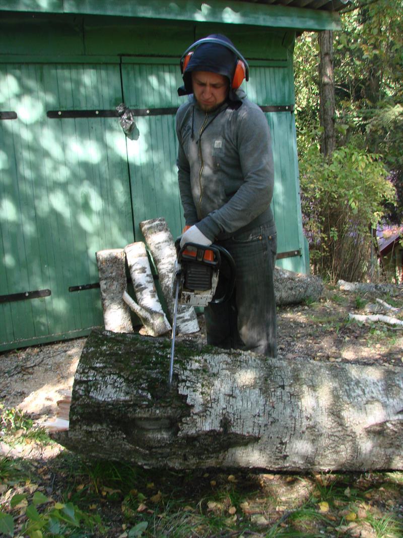 Распиливание дерева на дрова