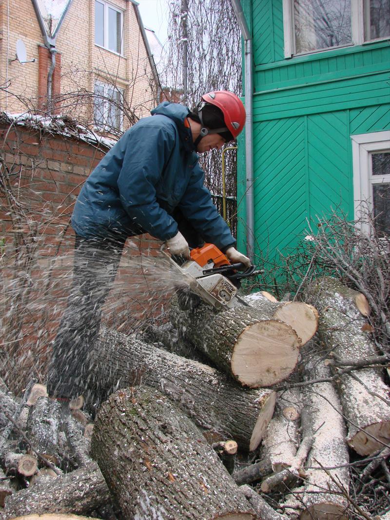 Распиловка дерева на дрова